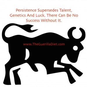 pic bull persistence