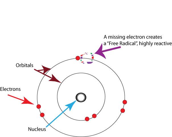 Free radicals oxygen